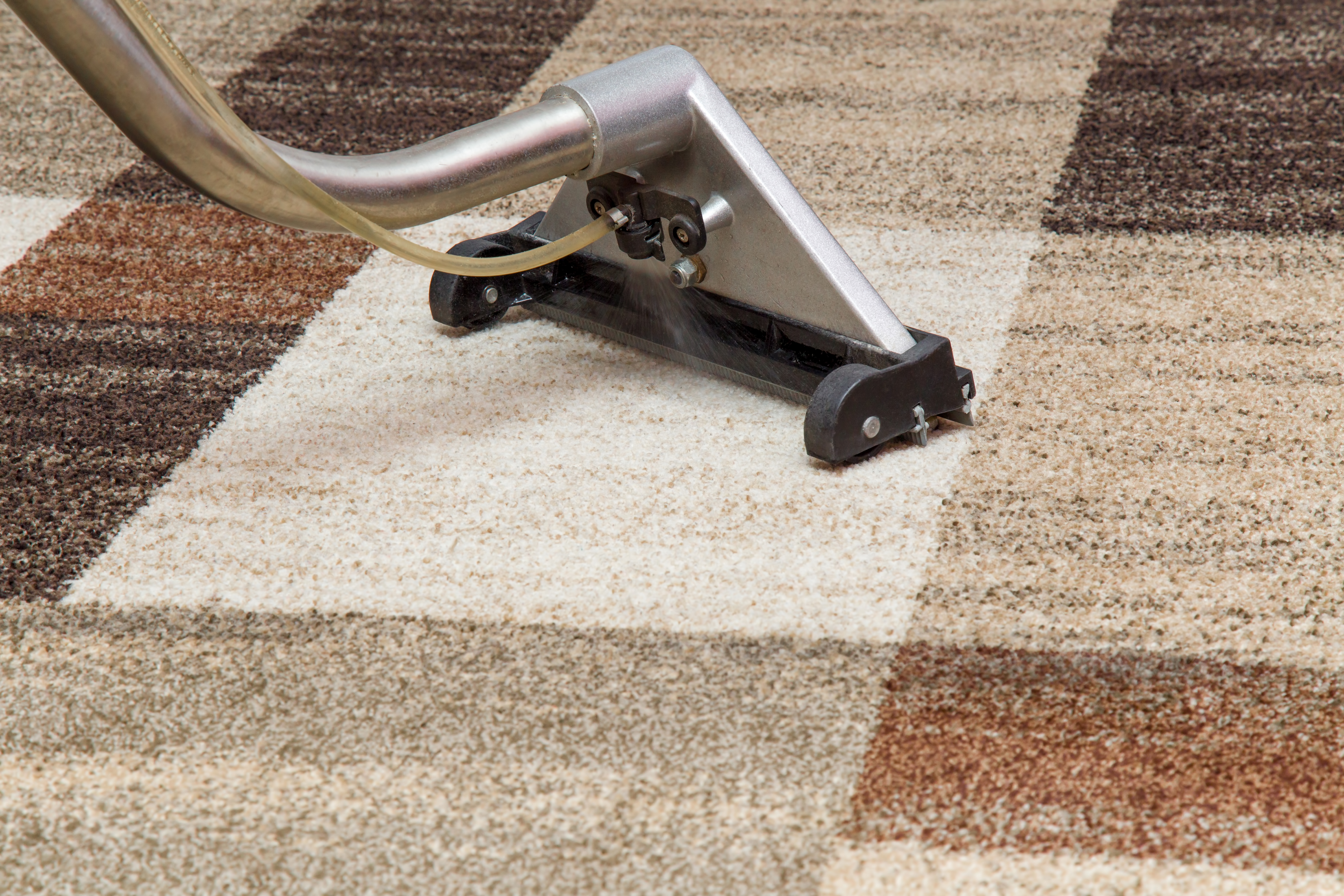 Carpet Cleaning Tips For You Cypress Carpet Cleaning